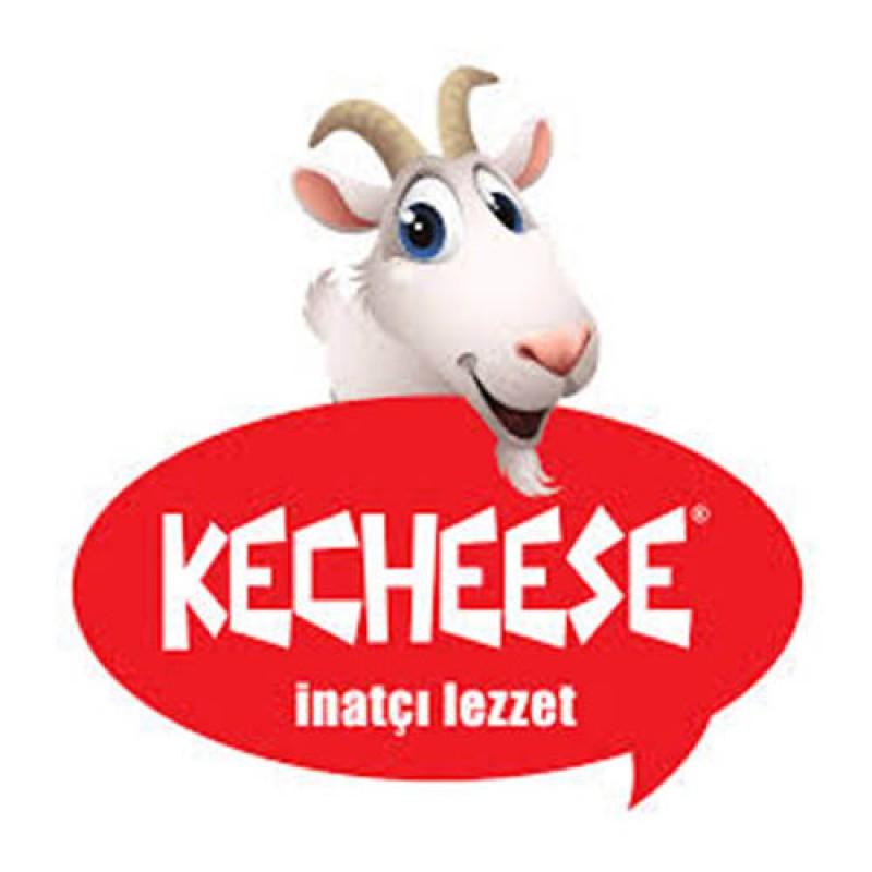 Türer A.Ş ( Kecheese peynirleri )